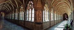 Cloître de la Cathédrale Saint-Paul de Liège, Belgium (claude lina) Tags: claudelina belgium belgique liège cloître cathédrale cathédralesaintpauldeliège