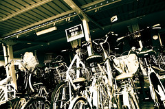 Need Bikes?? (Nooobi) Tags: japan bycicles monochromatic