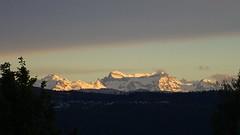 A Swiss Evening (Daphne-8) Tags: alps alpes alpen swityerland suisse schweiz mountains bergen abend avond evening light sunset sonnenuntergang schnee snow