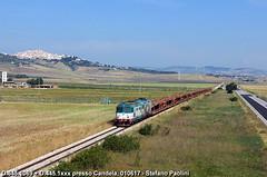 Freight in Candela (di Stefano ©Praz Paolini) Tags: 345 445 candela fiat cargo trenitalia