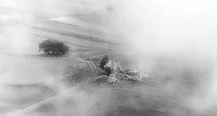 ...dalla nebbia (Likantrupus) Tags: fog nebbia black white castelluccio di norcia italy nature marche umbria natura