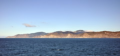 Away from Wellington city sailing into Cook Strait (Lim SK) Tags: wellington cook strait sail