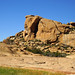 DSC07761 - NAMIBIA 2017  Elefantenkopf - Ameib Lodge