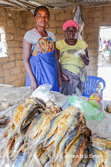 At the fish vendors (10b travelling / Carsten ten Brink) Tags: 10btravelling 2016 africa african afrika afrique angola angolan carstentenbrink chibia genericplaces huila huiya huíla iptcbasic lubango otherkeywords places southwest dried fish market province provincial roadside south southern southwestafrica southwestern stall stand tenbrink vendor woman