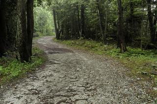 Scenic Drive Trail