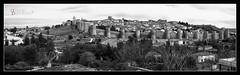 Panorámica de Ávila, España. (FredySonrisas) Tags: españa spain avila europe europa bw panorámica panorama village murallas