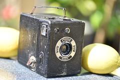 Coronet BOBOX Camera, 1936 (Jojorei) Tags: coronet bobox camera kamera cam photo foto fotoaparat kleinbild film 1936 antik antique old collecting sammeln meniscope tiranty