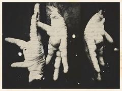 Chicken fingers-1745 (Poetic Medium) Tags: stilllife ipad ipod kitcamghostbird blender chicken food