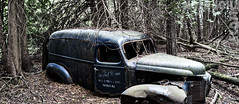 Stuck-in-the-mud (Scott D. Thornton) Tags: antique car rural forest rust rusty ontario derelict