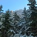 """ActiveHolidaysRomania - Day Hike in Piatra Craiului National Park, oct 2016 (2) • <a style=""""font-size:0.8em;"""" href=""""http://www.flickr.com/photos/131242750@N08/34761614921/"""" target=""""_blank"""">View on Flickr</a>"""