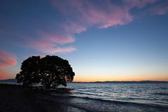 after sunset... (...DoN...) Tags: lake lakebiwa dusk sunset eos5d2 canon shiga japan wave water