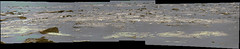 Decoded Sand and Rocks in Gale Crater, variant (sjrankin) Tags: 23may2017 edited nasa mars bayerdecoded colorized msl curiosity sand rocks galecrater