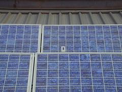 fotovoltaico sulle scuole di Forlì
