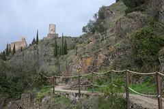 Le chemin vers les châteaux de Lastours (Philippe_28) Tags: lastours ruines châteaux ruins 11 aude france europe tour cathare cabaret regine surdespine quertinheux