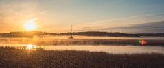 Morning Flare (trm42) Tags: summernight nightmood sunrise finland lensflare em1mk2 kevätyö nightfog auringonnousu helsinki suomi olympusomd yötunnelma tunnelma kesäyö newcamera silhouette nature vanhankaupunginlahti seafog landscapephotography viikki foggy maisema tele landscape sea field