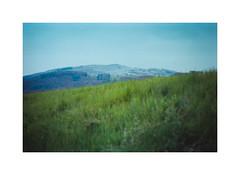 Green, green grass (cardijo) Tags: landscape landschaft analog film kodak portra160 fujica st605 helios442
