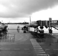 Welcome to Italy (roomman) Tags: 2017 poland italy travel warsaw bari waw bri epwa fly flight transport tarnsportation plane wizz wizzair airline airliner a320 airbus jet airport libd halyi lyi airbisa320 320 gate finger arrival arrived bw black white blackandwhute bandw rain riany storm wether businessjet business terminal rainy weather bad