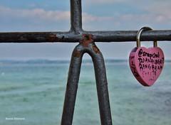 Key Of Love (Nourah.A.Edhbayah (Super Flower♥إظبيه)) Tags: قلب الحب قفل الكويت اظبيه عبدالله نوره abdullah edhbayah kuwait q8 nourah love key