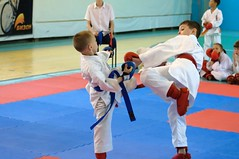 "pervenstvo-asbestovskogo-gorodskogo-okruga-po-karate-2017-7 • <a style=""font-size:0.8em;"" href=""http://www.flickr.com/photos/146591305@N08/34872048201/"" target=""_blank"">View on Flickr</a>"