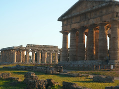 Paestum, Italy (Grazerin/Dorli B.) Tags: temple greektemple paestum italy ancient ruins history architecture outdoors elements