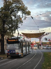 Melbourne A class tram and C class tram at Hoddle Street intersection (paddington62) Tags: australia victoria collingwood victoriaparade aclass melbourne yarratrams streetcar trolley tram