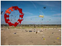 Kites above Fanø