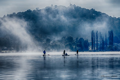 Early morning activity (Theresa Hall (teniche)) Tags: australia canberra lakeburleygriffin mountainslie nikon nikond750 tamrom tamron70200 teniche theresahall fog foreshore lake landscape mist morning morningexercise morningmist water paddle paddles dog dogs wake boarding wakeboarding wakeboard