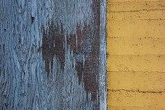 Blue and Yellow Wall 4579 D (jim.choate59) Tags: blue yellow plywood brick wall minimalism texture jchoate rx100