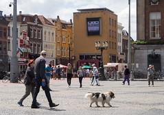 Grote Markt (Jeroen Hillenga) Tags: groningen grotemarkt stad straat street streetwise straatfotografie streetphotography city cityscape candid netherlands nederland