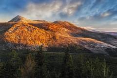 Windy Peak, Pasayten Wilderness (i8seattle) Tags: pasayten pasaytenwilderness cathedrallake cathedralpeak amphitheatermountain irongatetrailhead toatscouleeroad larch windypeak uppercathedrallake cathedralpass