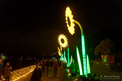 20170531-36-VIvid Light display at Sydney Botanic Gardens (Roger T Wong) Tags: 2017 australia nsw newsouthwales rogertwong sel2470z sony2470 sonya7ii sonyalpha7ii sonyfe2470mmf4zaosscarlzeissvariotessart sonyilce7m2 sydney sydneybotanicalgardens vivid festival lights llluminated night sunflower