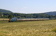A Deltic thunders through the Welsh Marches (Andrew Edkins) Tags: class55 deltic napier d9009 55009 alycidon railwayphotography england uk diesel preserved canon geotagged welshcentralliner wheatfield landscape bluesky shropshire 2017 trip travel charter wistanstow cravenarms
