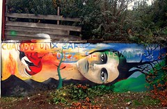 Cuando unx cae, Diez se Levantan! (Felipe Smides) Tags: mapuche muralismo mural felipesmides smides resistencia