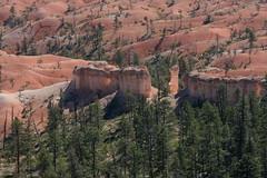(brian dean bollman) Tags: garfieldcountyut brycecanyonnationalpark mudstone siltstone limestone claronformation