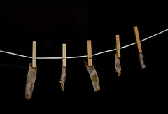 Bone Drying (ricko) Tags: clothesline clothespins bones ribbones drying