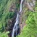 San Ignacio - Cascading Downwards