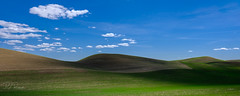Palouse I (PJ Resnick) Tags: 2017 pjresnick palousewa perryjresnick pjresnickgmailcom pjresnickphotographygmailcom ©2017pjresnick ©pjresnick nature light fuji fujifilm atmosphere atmospheric digital shadow texture shadows yellow angle perspective naturallight white xf fujinon resnick outdoor green brown orange rectangle rectangular color colour sky clouds blue xpro2 fujifilmxpro2 2x5 washington velvia fufjifilmvelvia filmsimulation 16mm fujinon16mmf14 fuji16mm