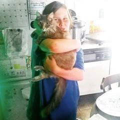 Ryan and his cat sister, Freyja. 🐈 #dilutetorbie #torbie #dilutetabby #dilutetortoiseshell #tortoiseshellcat #rescuecat #formerstray #spayandneuter #adoptdontshop #cat #catstagram #catsofinstagram (Jenn ♥) Tags: ifttt instagram