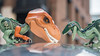 Dino buddies (Reiterlied) Tags: 18 35mm d500 dslr dino dinosaur frankensteinosaurus lens london nikon photography prime raptor reiterlied stuckinplastic trex toy tyrannosaur velociraptor velocirex