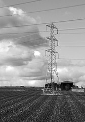 Pylon 3 (magaroonie) Tags: 7daysofshooting week47 electricity blackandwhitewednesday