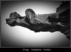 Gargoyles - 10 (fotomänni) Tags: prag praha prague veitsdom gargoyles wasserspeier steinfiguren skulpturen skulptur sculpture kunst schwarzweis blackwhite noirblanc gargouille manfredweis