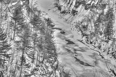 Winter at Letchworth in Black & White (Adventure George) Tags: acdseeultimate blackandwhite blackandwhiteimaging fingerlakes geneseeriver gorge hdr highdynamicrangeimage iceformations landscapes letchworthstatepark march marchsnow monochrome monochromephotography naturalworld nature newyork newyorkstate nikond700 northamerica nystatepark outdoor park photogeorge photoshoot photomatixpro river rivervalley scenic skylandwater snow snowscene upstatenewyork us usa water westernnewyork winter winterscene unitedstatesofamerica