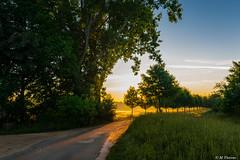 Sunrise (Codex IV) Tags: architektur aufderhub golfplatz gutneuhof land landscape landschaft nikond5300 profan sigma100200 sonnenaufgang spring sunrise architecture sonnig sunny frühling