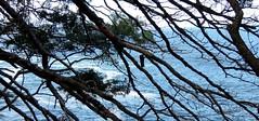 Da pista! (Rctk caRIOca) Tags: urca praia vermelha pista cláudio coutinho rio de janeiro