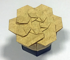 Rhombus twist flower box (mganans) Tags: origami tessellation box flower