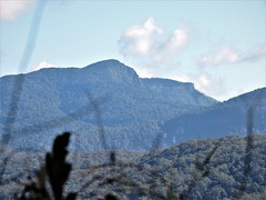 Mt.Roberts and Lizard Pt (flashmick) Tags: queensland bushwalk mountains scenicrim burnett border