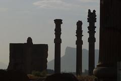 Persépolis. Fars (Irán)