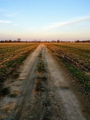 IMG_20170225_174943 (storvandre) Tags: storvandre lombardia lombardy countryside campagna nature landscape road zibido milano parco agricolo