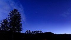 Tree silhouettes against the night sky (Merrillie) Tags: daybreak night landscape nature australia mountains patongascenery nighttime trees newsouthwales clouds stars nsw nightsky silhouettes astronomy centralcoast travel longexposure scenic coastal sky earlymornings nightscape coast dawn patonga