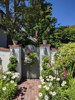 ...thru the garden to the fence door.   Happy Fenced Friday!